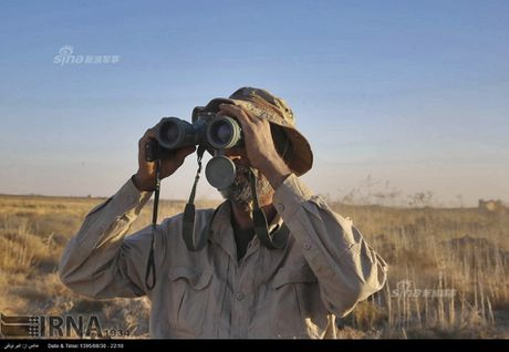 Muc kich tang, phao Quan doi Iraq xa mua dan vao Mosul - Anh 6