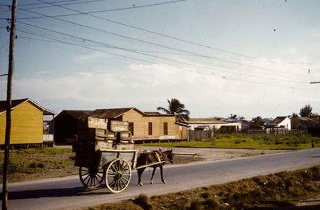 Dat nuoc Cuba nhung nam 1950 qua anh - Anh 4