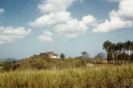 Dat nuoc Cuba nhung nam 1950 qua anh - Anh 6