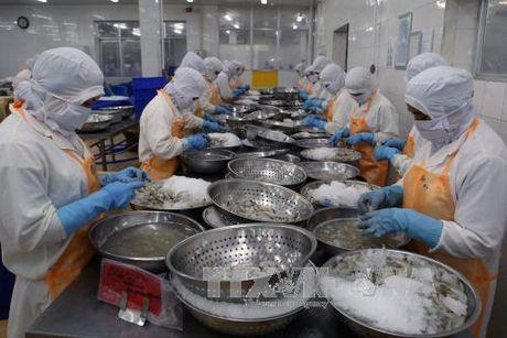 Xuat khau thuy san uoc dat 6,4 ty USD - Anh 1