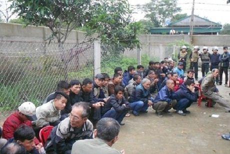 'Nuoi ga' trai phep, 54 doi tuong bi bat tai trang trai - Anh 1
