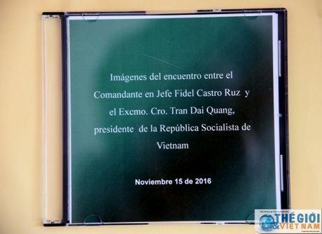 Hinh anh Lanh tu Cuba Fidel Castro trong cuoc gap Chu tich nuoc Tran Dai Quang - Anh 2