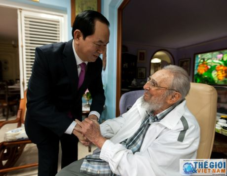 Hinh anh Lanh tu Cuba Fidel Castro trong cuoc gap Chu tich nuoc Tran Dai Quang - Anh 3