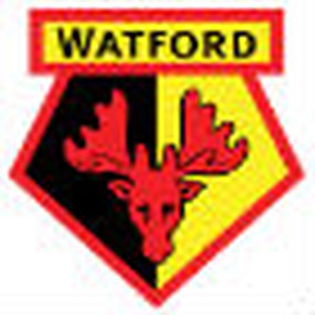 Chi tiet Watford - Stoke City: No luc vo vong (KT) - Anh 1
