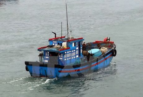 De nghi cho 29 tau ca vao tranh bao tai Philippines va Indonesia - Anh 1