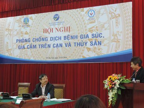 Chap tay 'bai phuc' ty le tiem phong dai cua Thanh Hoa... dat tren 90% - Anh 1