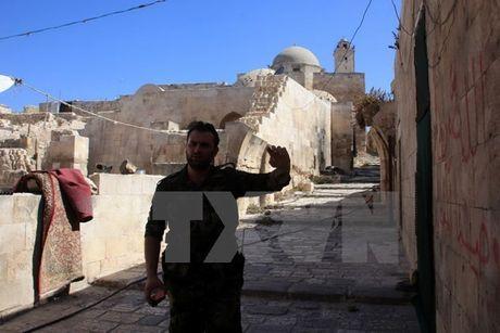 Quan doi Syria gianh quan quan trong tu phien quan o Aleppo - Anh 1