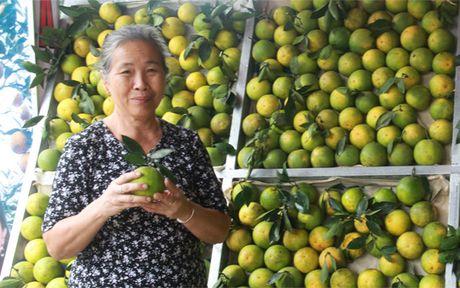 Cam Cao Phong vao mua: Phan biet hang that - hang gia the nao? - Anh 5