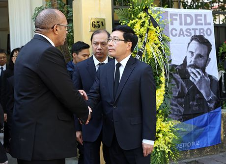 Lanh dao Dang, Nha nuoc va nguoi dan Viet Nam den vieng lanh tu Fidel Castro - Anh 6