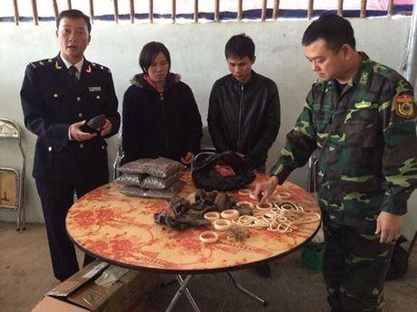 Bat 2 doi tuong nghi van chuyen sung te giac, nga voi - Anh 1