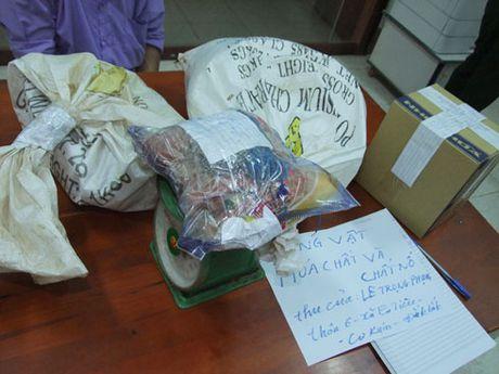 Khoi to doi tuong tang tru trai phep vat lieu no - Anh 2
