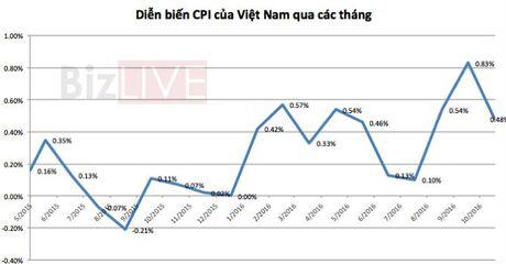 Thay gi tu so lieu xuat nhap khau cua Viet Nam sau 11 thang? - Anh 1