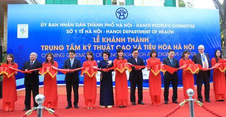 Mang tieu chuan y te chau Au den Ha Noi - Anh 1