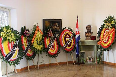 Lanh dao Ha Noi vieng Lanh tu Cuba Fidel Castro - Anh 3