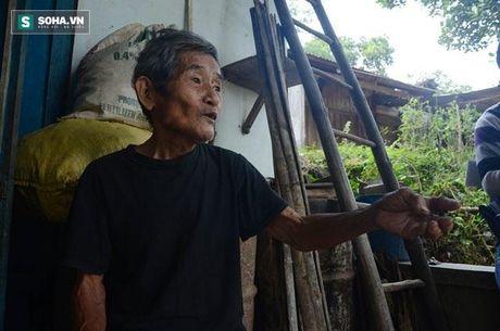 'Dai hoa nam Thin' o Quang Nam va loi canh bao tu thien nhien - Anh 2