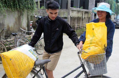 CTCP Phan bon Binh Dien ho tro nong dan Ha Tinh bi thiet hai vi bao lu - Anh 3