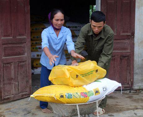 CTCP Phan bon Binh Dien ho tro nong dan Ha Tinh bi thiet hai vi bao lu - Anh 6
