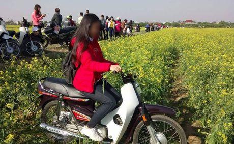 Lai den mua trai gai 'vui hoa dap lieu' day song mang phuot - Anh 2