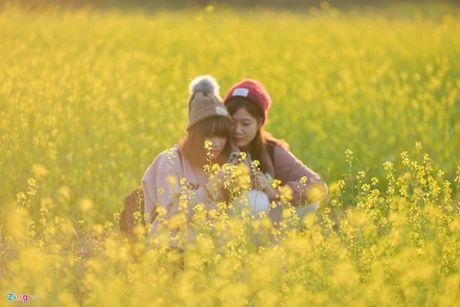 Lai den mua trai gai 'vui hoa dap lieu' day song mang phuot - Anh 4