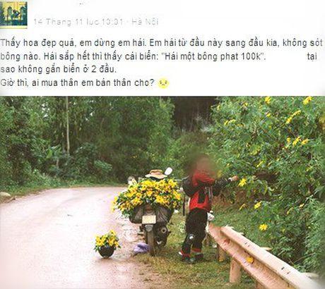 Lai den mua trai gai 'vui hoa dap lieu' day song mang phuot - Anh 6