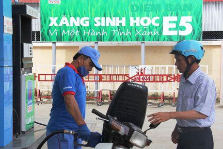Sap thay the toan bo xang RON 92 bang xang sinh hoc E5 - Anh 1