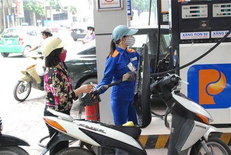 Co the thay the xang RON 92 bang E5 vao giua nam 2017 - Anh 1