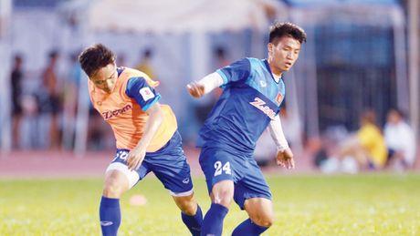 Tuyen Viet Nam don tin vui truoc ban ket AFF Cup - Anh 1