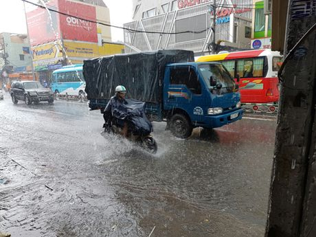 Nhung dieu khien du khach Thuy Si la lam o Viet Nam - Anh 2