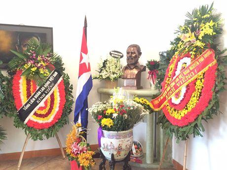 Doan dai bieu Tong LDLDVN vieng dong chi Fidel Castro - Anh 2