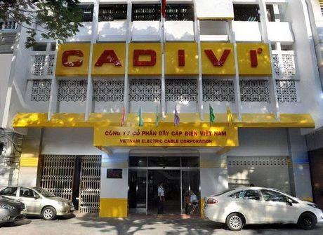 Cadivi (CAV) bi truy thu va nop phat gan 16 ty dong tien thue - Anh 1