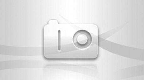 Gan 10 nghin doanh nghiep thanh lap moi trong thang 11 - Anh 1