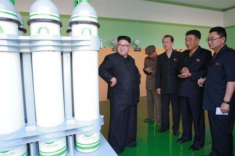 Phong cach dac biet cua Kim Jong Un - Anh 2
