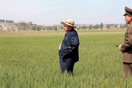 Phong cach dac biet cua Kim Jong Un - Anh 8
