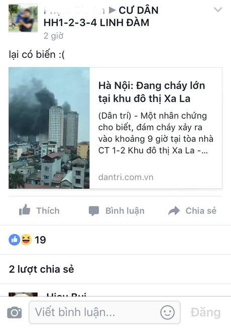 Cu dan 'chung cu ong Than' hot hoang lo ba hoa - Anh 4