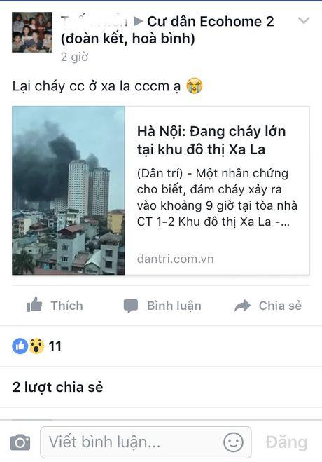 Cu dan 'chung cu ong Than' hot hoang lo ba hoa - Anh 5