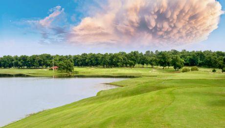 260 golf thu tham du giai BRG Golf Ha Noi Festival 2016 - Anh 2