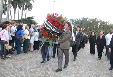 Hinh anh: Doan dai bieu Dang, Nha nuoc Viet Nam vieng Lanh tu Cuba Fidel - Anh 6