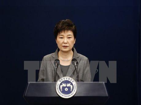 Ba Park Geun-hye se tuan thu moi quyet dinh cua Quoc hoi - Anh 1