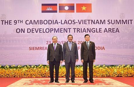 CLV: 'Tam giac phang' tu vien thong - Anh 1
