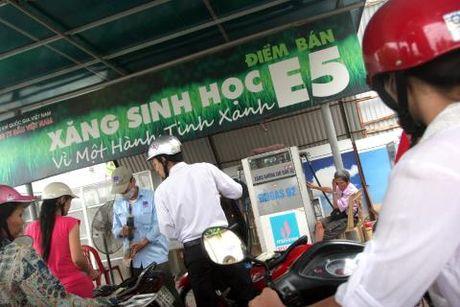 Thay the xang A92 bang E5: Nha may ethanol van buon - Anh 1