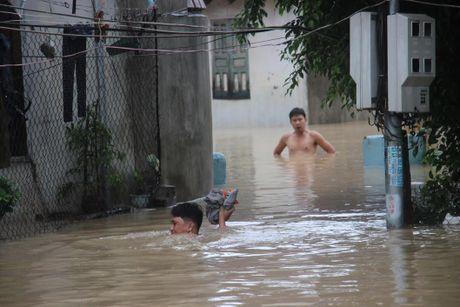 Binh Dinh: Hang ngan ha lua lai chim trong bien nuoc, nhieu vung bi chia cat - Anh 2