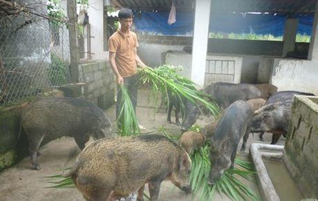 Muon kieu ky cong san dac san Tet cua dan Ha thanh - Anh 4