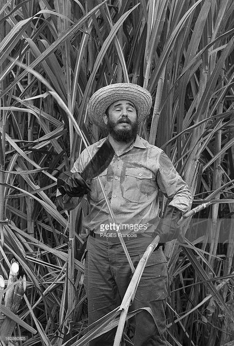 Anh lich su it nguoi biet ve lanh tu Fidel Castro (2) - Anh 6