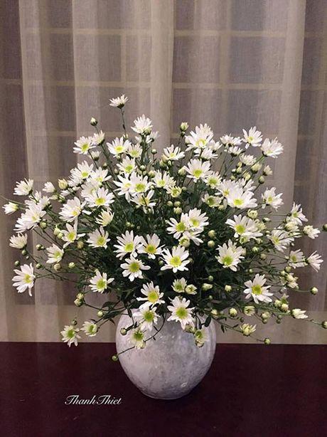 Xem chi em Ha Thanh cam cuc hoa mi ruc ro mot goc nha - Anh 4