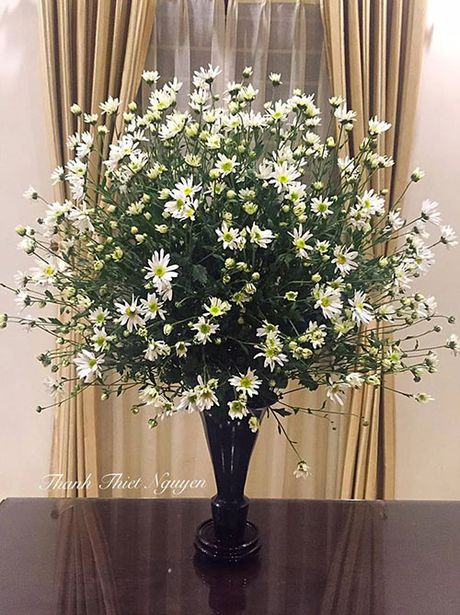 Xem chi em Ha Thanh cam cuc hoa mi ruc ro mot goc nha - Anh 5