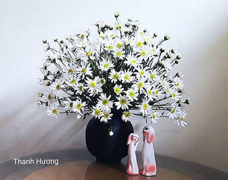 Xem chi em Ha Thanh cam cuc hoa mi ruc ro mot goc nha - Anh 6