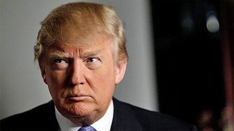 Ong Donald Trump bi 'to' phan boi cu tri - Anh 1