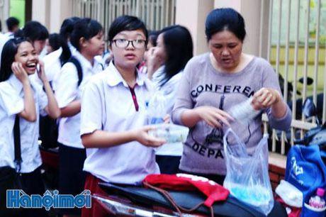Nhieu giai phap chan chinh viec day them, hoc them tran lan - Anh 1