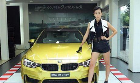 'Nhap nhem' khi nhap BMW, Cong ty Au Chau bi de nghi khoi to - Anh 1