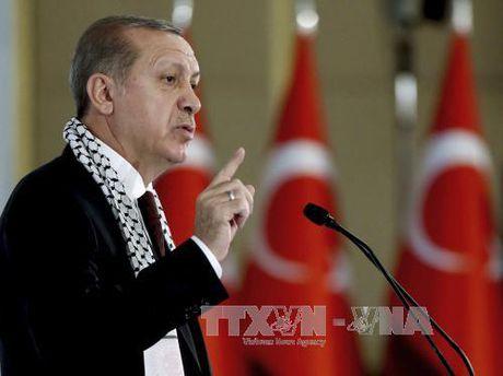 Ong Erdogan: Quan doi Tho Nhi Ky vao Syria de lat do Assad - Anh 1